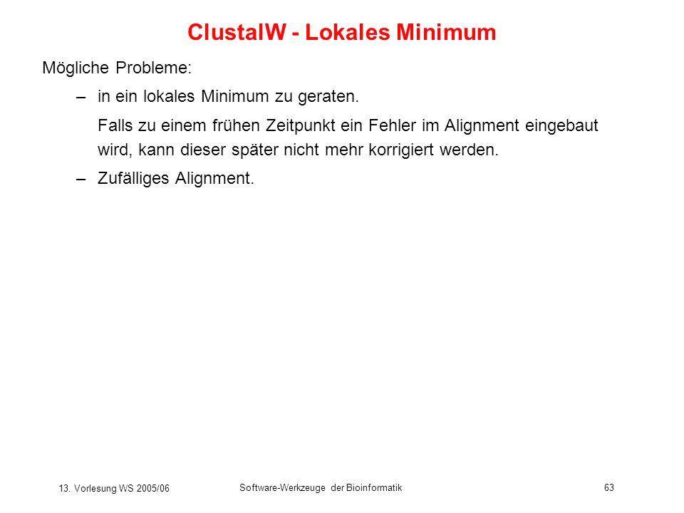 13. Vorlesung WS 2005/06 Software-Werkzeuge der Bioinformatik63 Mögliche Probleme: –in ein lokales Minimum zu geraten. Falls zu einem frühen Zeitpunkt