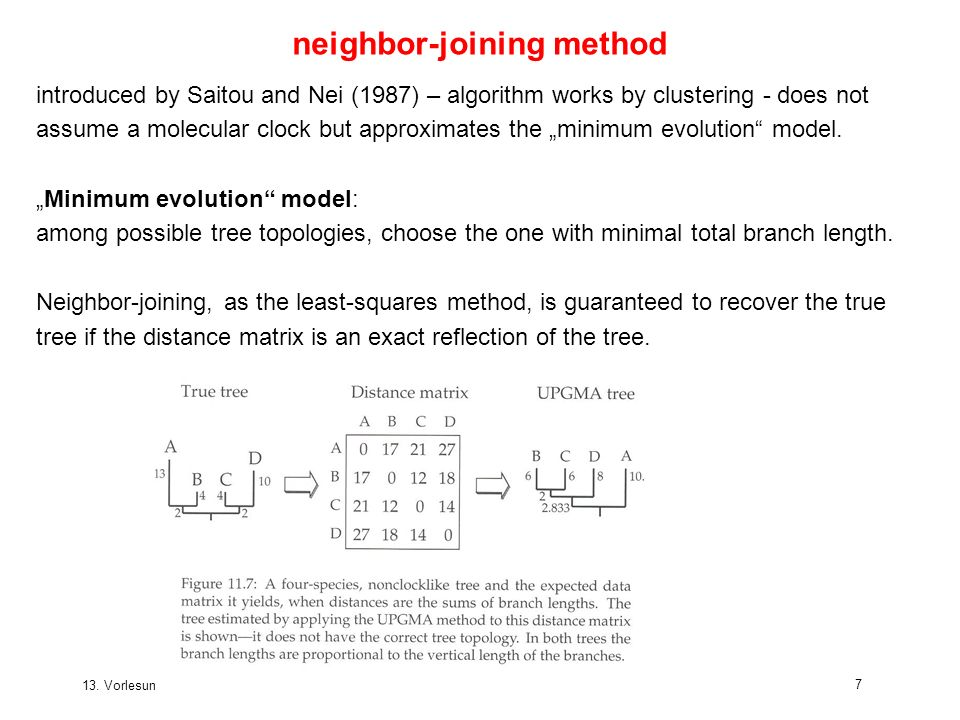 13. Vorlesung WS 2005/06 Software-Werkzeuge der Bioinformatik97 neighbor-joining method introduced by Saitou and Nei (1987) – algorithm works by clust