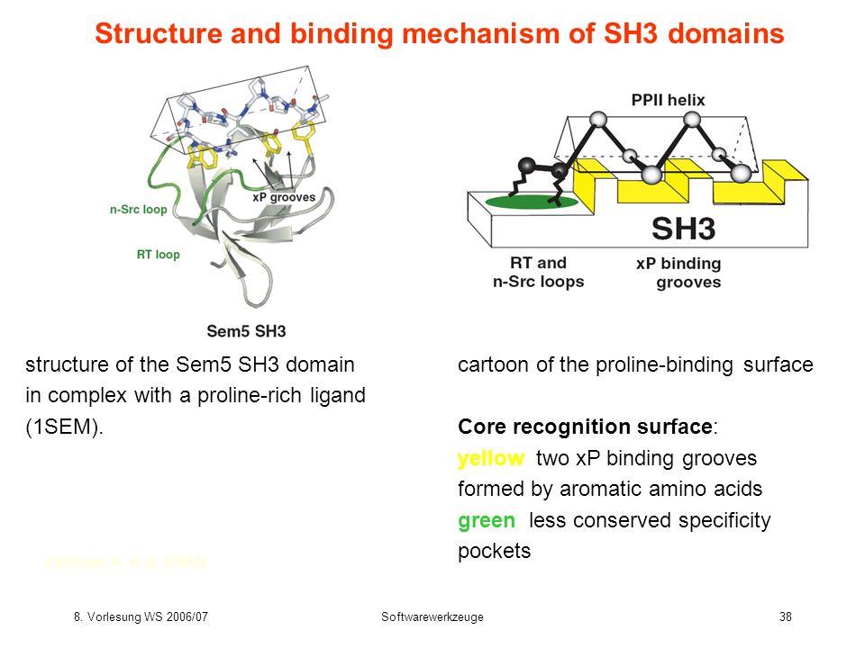 8. Vorlesung WS 2006/07Softwarewerkzeuge38 Structure and binding mechanism of SH3 domains Zarrinpar, A. et al. (2003) structure of the Sem5 SH3 domain
