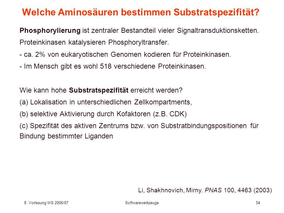 8. Vorlesung WS 2006/07Softwarewerkzeuge54 Welche Aminosäuren bestimmen Substratspezifität? Phosphorylierung ist zentraler Bestandteil vieler Signaltr