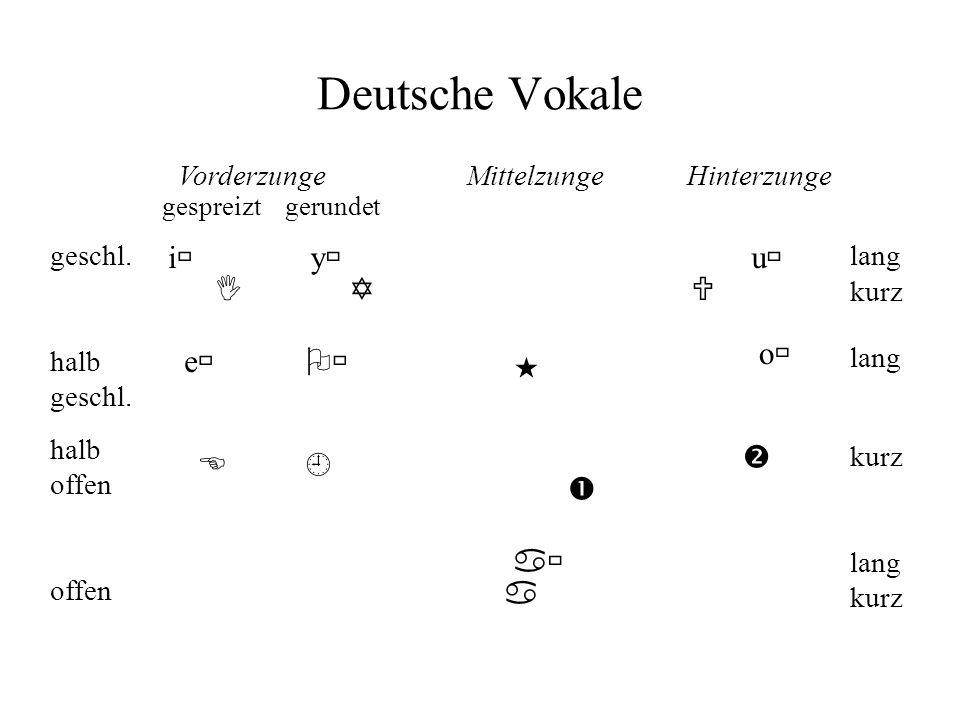 Deutsche Vokale VorderzungeMittelzunge Hinterzunge gespreizt gerundet geschl. halb geschl. halb offen offen lang kurz lang kurz lang kurz i y u IYU E