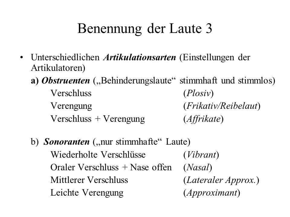 Benennung der Laute 3 Unterschiedlichen Artikulationsarten (Einstellungen der Artikulatoren) a) Obstruenten (Behinderungslaute stimmhaft und stimmlos)