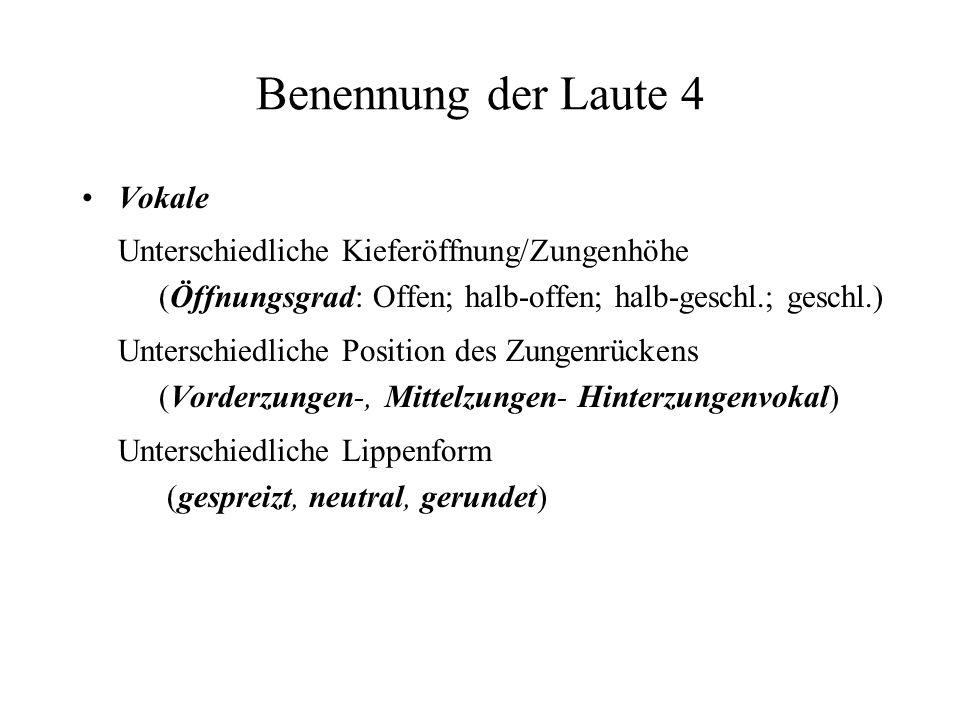 Benennung der Laute 4 Vokale Unterschiedliche Kieferöffnung/Zungenhöhe (Öffnungsgrad: Offen; halb-offen; halb-geschl.; geschl.) Unterschiedliche Posit