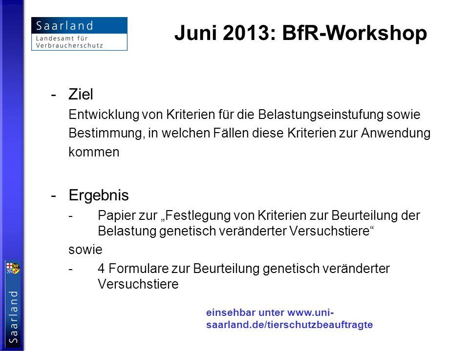 Juni 2013: BfR-Workshop -Ziel Entwicklung von Kriterien für die Belastungseinstufung sowie Bestimmung, in welchen Fällen diese Kriterien zur Anwendung