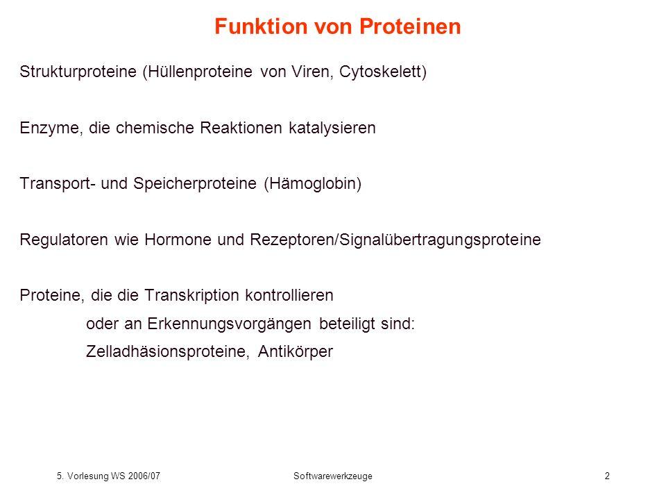 5. Vorlesung WS 2006/07Softwarewerkzeuge2 Funktion von Proteinen Strukturproteine (Hüllenproteine von Viren, Cytoskelett) Enzyme, die chemische Reakti