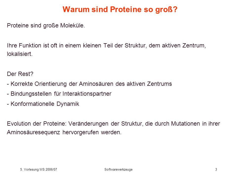 5. Vorlesung WS 2006/07Softwarewerkzeuge3 Warum sind Proteine so groß? Proteine sind große Moleküle. Ihre Funktion ist oft in einem kleinen Teil der S