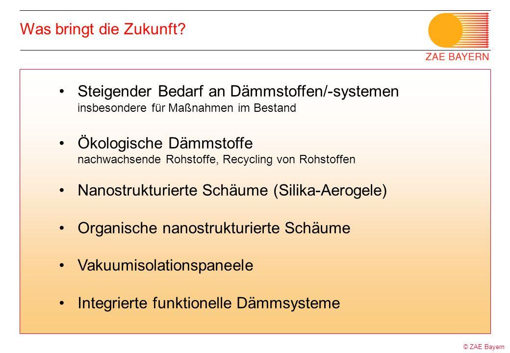 © ZAE Bayern Was bringt die Zukunft? Steigender Bedarf an Dämmstoffen/-systemen insbesondere für Maßnahmen im Bestand Ökologische Dämmstoffe nachwachs