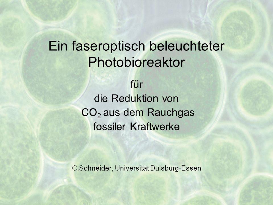 Ein faseroptisch beleuchteter Photobioreaktor für die Reduktion von CO 2 aus dem Rauchgas fossiler Kraftwerke C.Schneider, Universität Duisburg-Essen