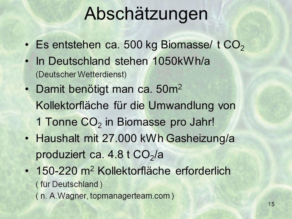 15 Abschätzungen Es entstehen ca. 500 kg Biomasse/ t CO 2 In Deutschland stehen 1050kWh/a (Deutscher Wetterdienst) Damit benötigt man ca. 50m 2 Kollek