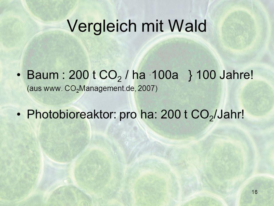 16 Vergleich mit Wald Baum : 200 t CO 2 / ha. 100a } 100 Jahre! (aus www. CO 2 Management.de, 2007) Photobioreaktor: pro ha: 200 t CO 2 /Jahr!