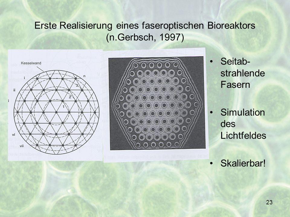 23 Erste Realisierung eines faseroptischen Bioreaktors (n.Gerbsch, 1997) Seitab- strahlende Fasern Simulation des Lichtfeldes Skalierbar!