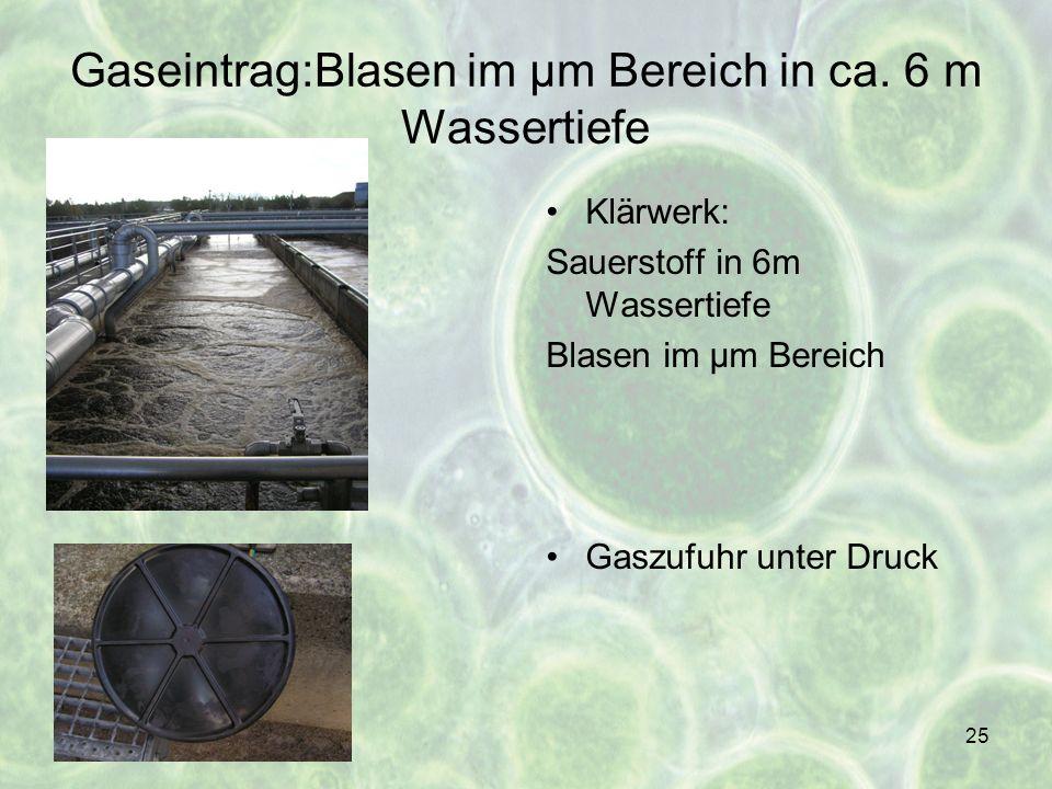 25 Gaseintrag:Blasen im µm Bereich in ca. 6 m Wassertiefe Klärwerk: Sauerstoff in 6m Wassertiefe Blasen im µm Bereich Gaszufuhr unter Druck