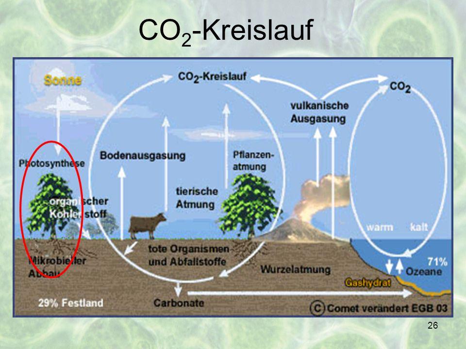 26 CO 2 -Kreislauf