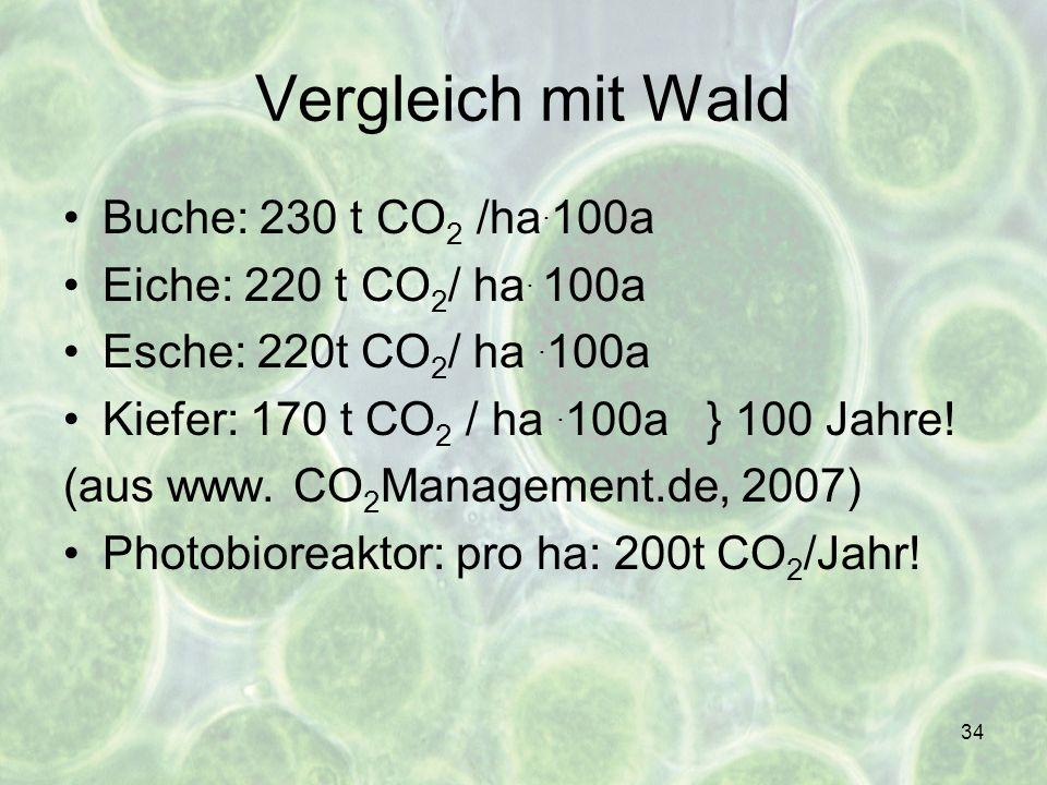 34 Vergleich mit Wald Buche: 230 t CO 2 /ha. 100a Eiche: 220 t CO 2 / ha. 100a Esche: 220t CO 2 / ha. 100a Kiefer: 170 t CO 2 / ha. 100a } 100 Jahre!