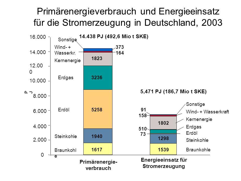 Primärenergieverbrauch und Energieeinsatz für die Stromerzeugung in Deutschland, 2003 0 2.000 4.000 6.000 8.000 10.000 12.00 0 14.000 16.000 PJPJ Primärenergie- verbrauch Energieeinsatz für Stromerzeugung 1617 1940 5258 3236 1823 164 373 1539 1298 73 510 1802 158 91 Braunkohl e Steinkohle Erdöl Erdgas Kernenergie Wind- + Wasserkr.