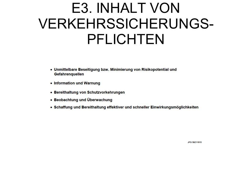E3. INHALT VON VERKEHRSSICHERUNGS- PFLICHTEN