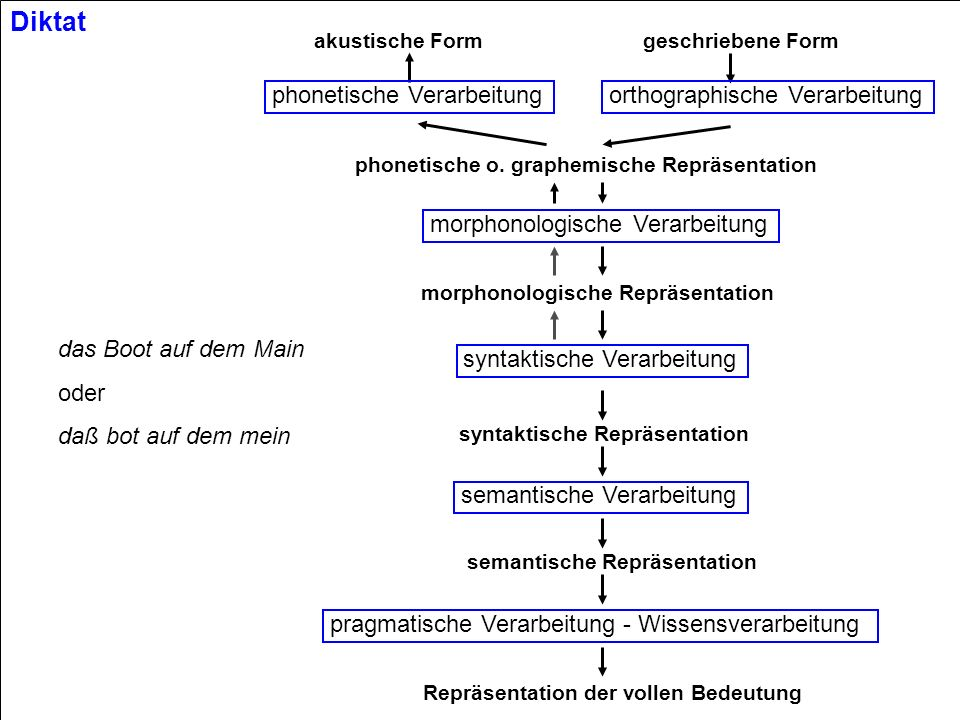 © 2002 Hans Uszkoreit VL CL Performance Modelling in the Past Coverage large scale HPSG grammar development in several languages lexical work on the morphological and syntactic side first steps towards learning from corpora Robustness robust semantic processing with underspecification work on soft constraints and preferences Efficiency efficient HPSG and DG processing efficiency in semantic processing by ambiguity reduction