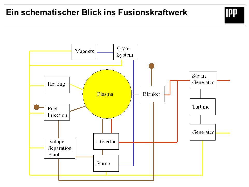 Ein schematischer Blick ins Fusionskraftwerk