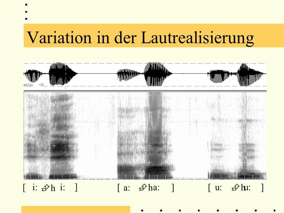 Variation in der Lautrealisierung i: h a: h h u: [] ] ] [[