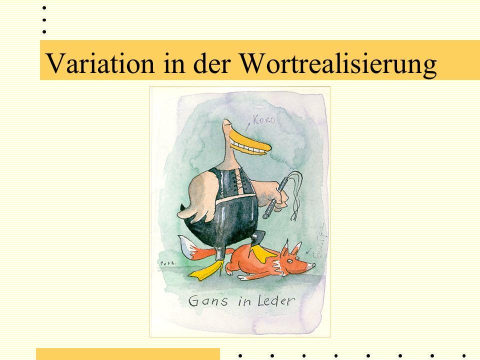 Literaturangaben: Van Alphen, P.und D. van Bergem (1989).