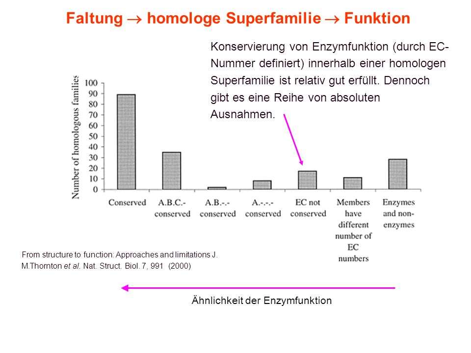 6. Vorlesung WS 2006/07Softwarewerkzeuge10 Faltung homologe Superfamilie Funktion From structure to function: Approaches and limitations J. M.Thornton