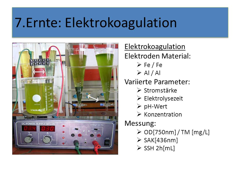 7.Ernte: Elektrokoagulation Elektrokoagulation Elektroden Material: Fe / Fe Al / Al Variierte Parameter: Stromstärke Elektrolysezeit pH-Wert Konzentration Messung: OD[750nm] / TM [mg/L] SAK[436nm] SSH 2h[mL]