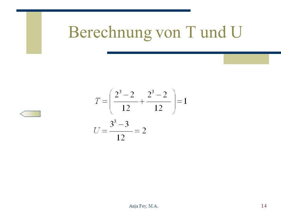 Anja Fey, M.A.14 Berechnung von T und U