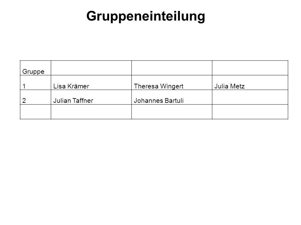 Gruppeneinteilung Gruppe 1Lisa KrämerTheresa WingertJulia Metz 2Julian TaffnerJohannes Bartuli
