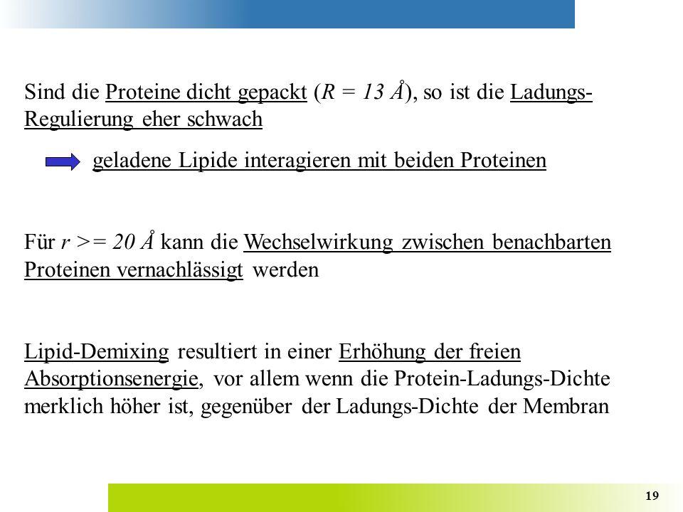 19 Sind die Proteine dicht gepackt (R = 13 Å), so ist die Ladungs- Regulierung eher schwach geladene Lipide interagieren mit beiden Proteinen Für r >= 20 Å kann die Wechselwirkung zwischen benachbarten Proteinen vernachlässigt werden Lipid-Demixing resultiert in einer Erhöhung der freien Absorptionsenergie, vor allem wenn die Protein-Ladungs-Dichte merklich höher ist, gegenüber der Ladungs-Dichte der Membran