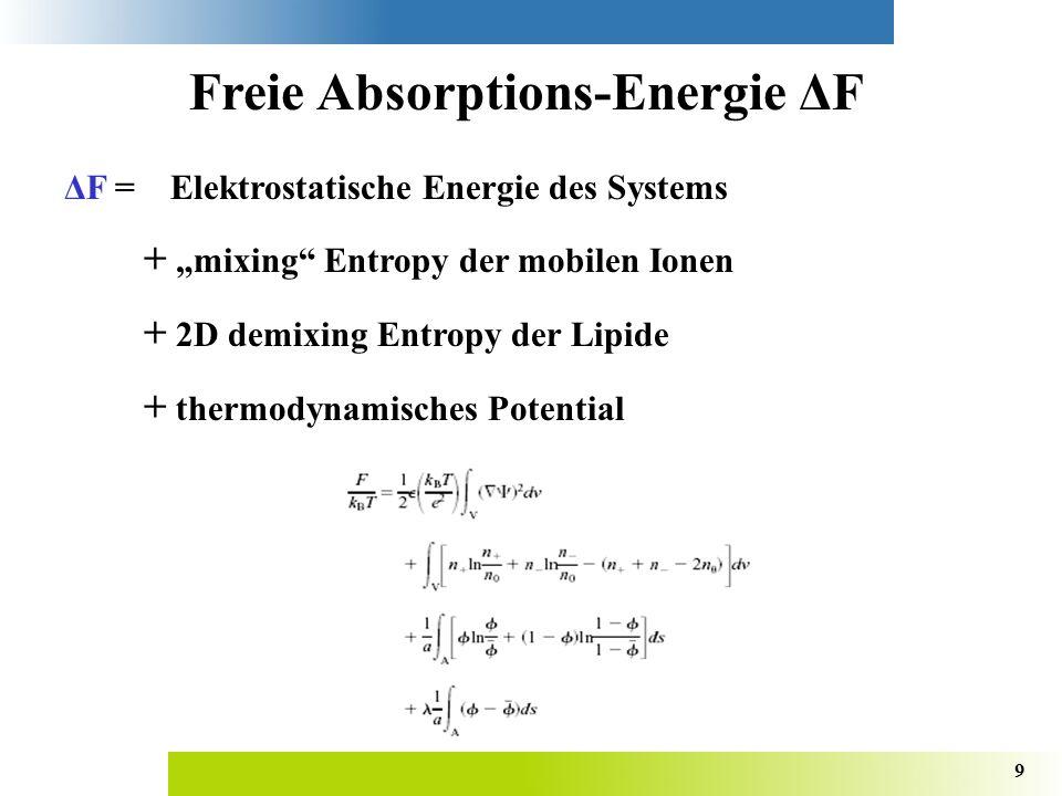 9 Freie Absorptions-Energie ΔF ΔF =Elektrostatische Energie des Systems + mixing Entropy der mobilen Ionen + 2D demixing Entropy der Lipide + thermodynamisches Potential