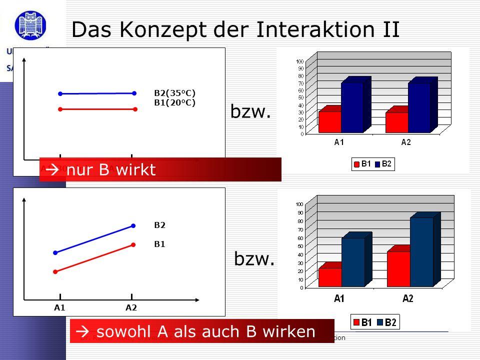 Dr. Rainer Roth, Universität des Saarlandes: Verarbeitung sozialer Information Das Konzept der Interaktion II bzw. A1A2 B1 B2 sowohl A als auch B wirk