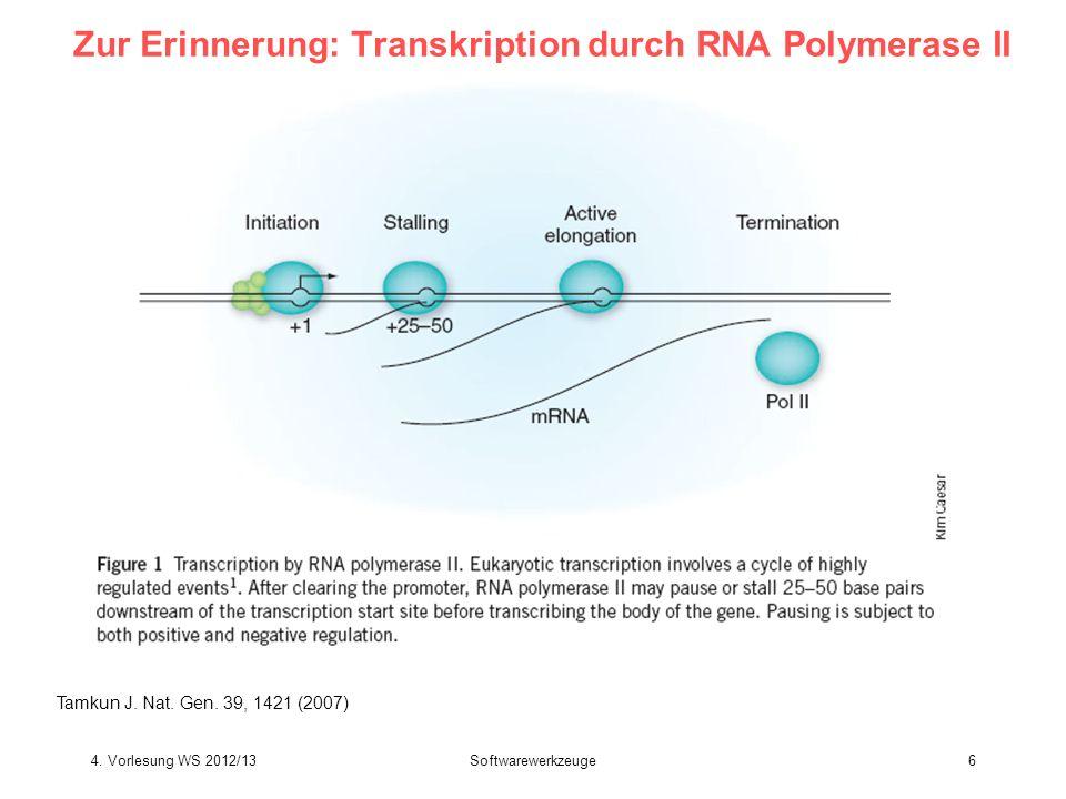 Zur Erinnerung: Transkription durch RNA Polymerase II Tamkun J. Nat. Gen. 39, 1421 (2007) Softwarewerkzeuge64. Vorlesung WS 2012/13