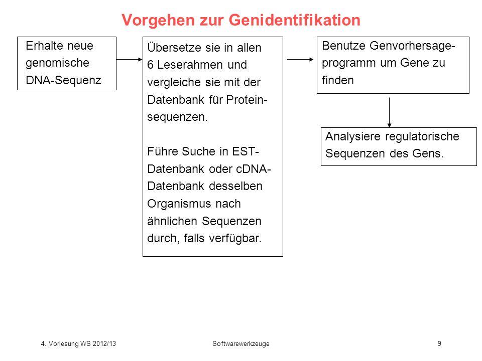 Softwarewerkzeuge9 Vorgehen zur Genidentifikation Erhalte neue genomische DNA-Sequenz Übersetze sie in allen 6 Leserahmen und vergleiche sie mit der D