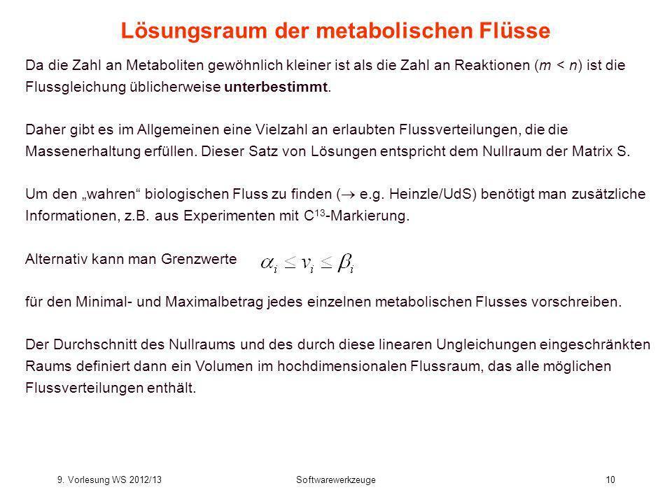 9. Vorlesung WS 2012/13Softwarewerkzeuge10 Lösungsraum der metabolischen Flüsse Da die Zahl an Metaboliten gewöhnlich kleiner ist als die Zahl an Reak