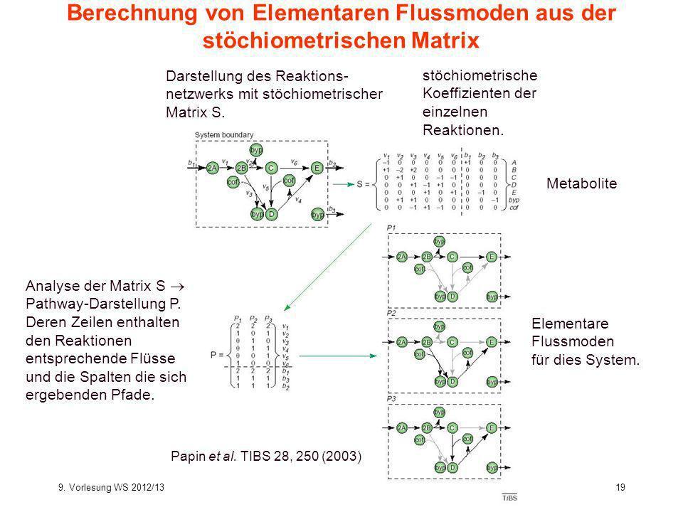9. Vorlesung WS 2012/13Softwarewerkzeuge19 Berechnung von Elementaren Flussmoden aus der stöchiometrischen Matrix Analyse der Matrix S Pathway-Darstel