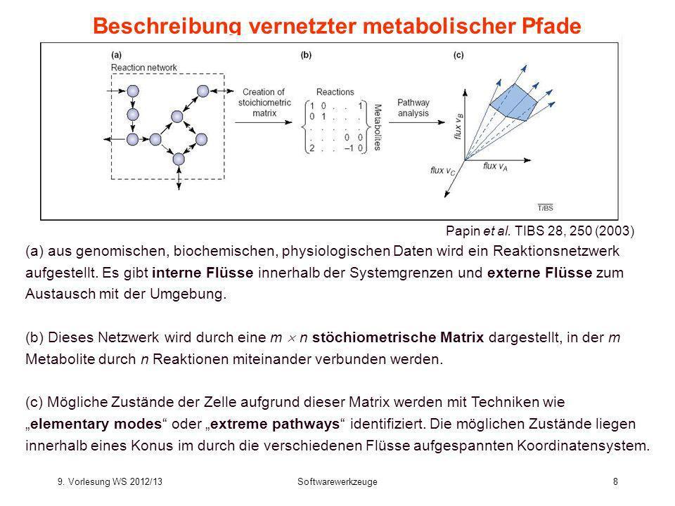 9. Vorlesung WS 2012/13Softwarewerkzeuge8 Beschreibung vernetzter metabolischer Pfade (a) aus genomischen, biochemischen, physiologischen Daten wird e
