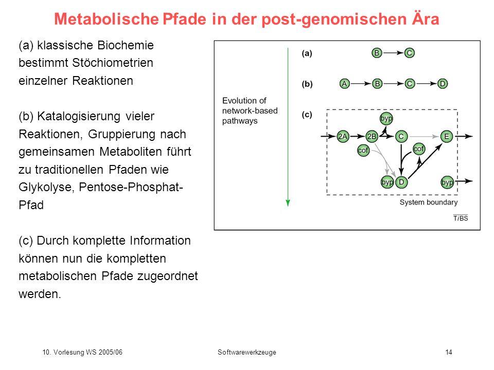 10. Vorlesung WS 2005/06Softwarewerkzeuge14 Metabolische Pfade in der post-genomischen Ära (a) klassische Biochemie bestimmt Stöchiometrien einzelner