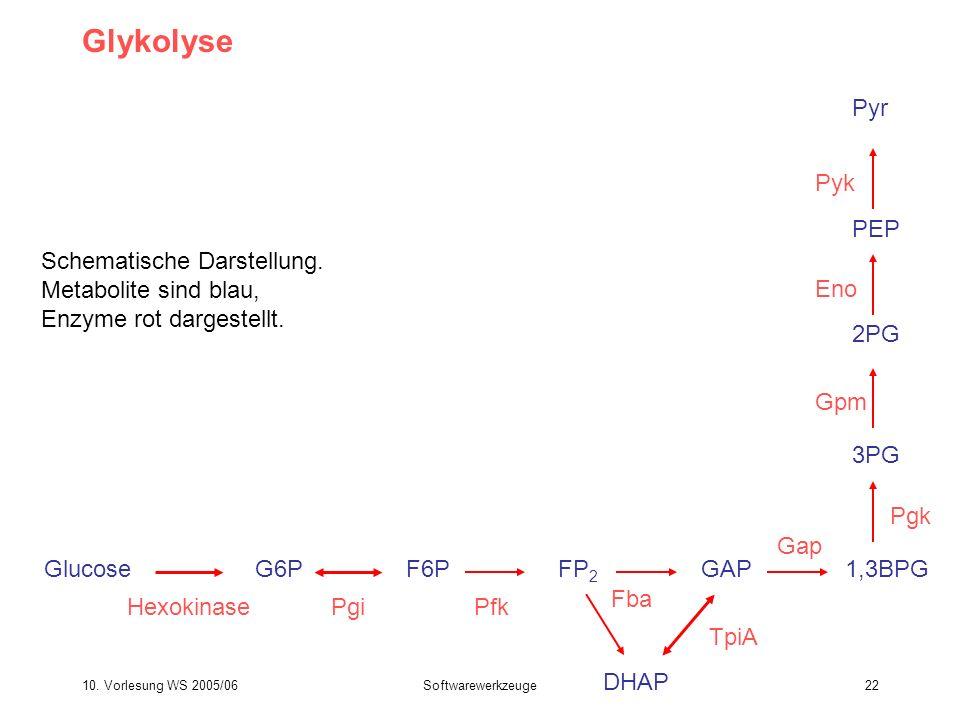 10. Vorlesung WS 2005/06Softwarewerkzeuge22 Glykolyse GlucoseG6P Hexokinase F6P Pgi FP 2 Pfk GAP Fba DHAP TpiA 1,3BPG 3PG Pgk Gap Gpm 2PG Eno PEP Pyk