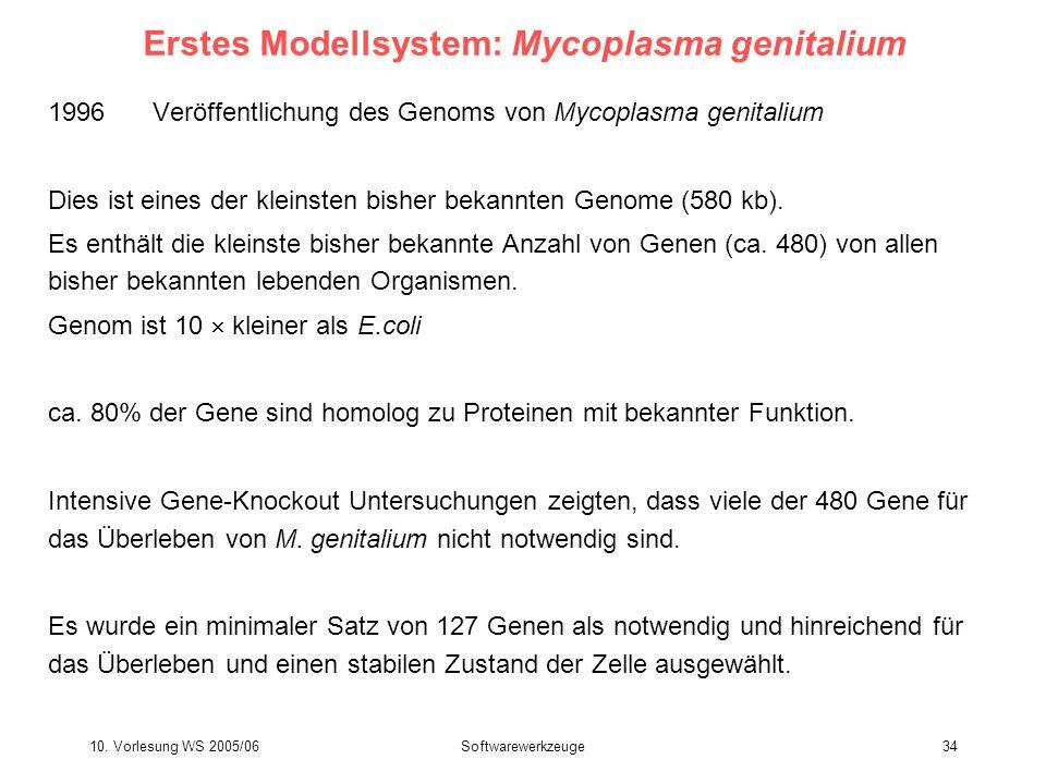 10. Vorlesung WS 2005/06Softwarewerkzeuge34 Erstes Modellsystem: Mycoplasma genitalium 1996 Veröffentlichung des Genoms von Mycoplasma genitalium Dies