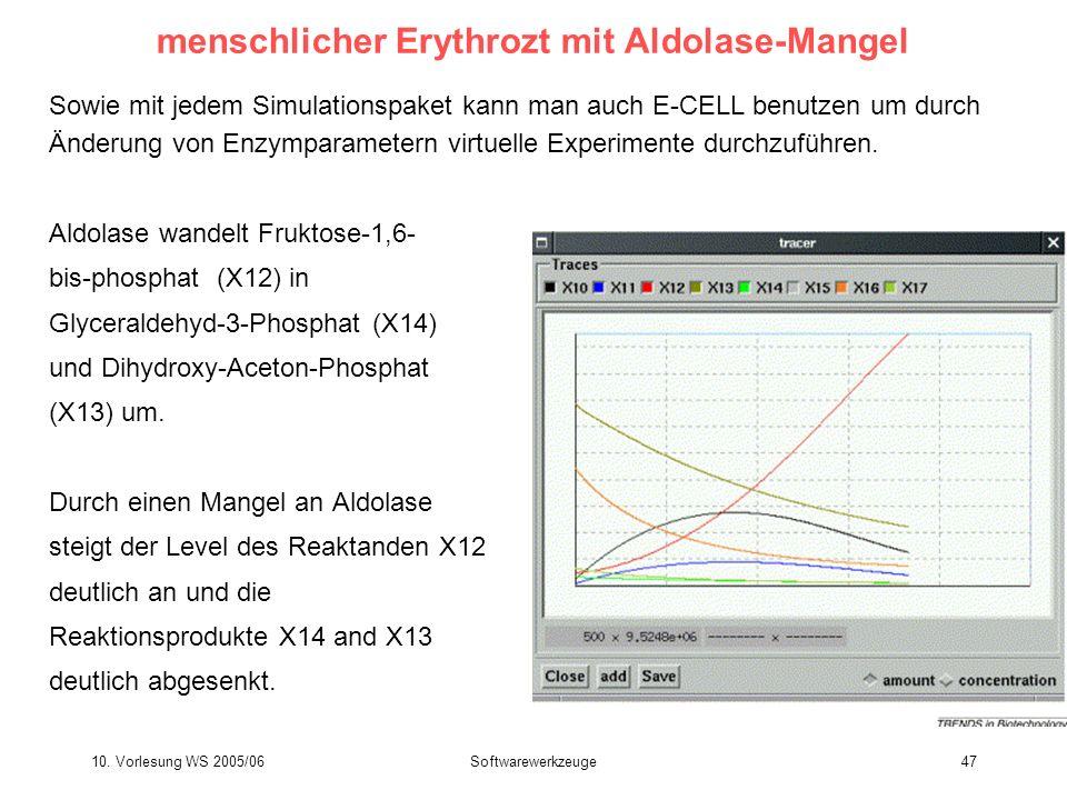 10. Vorlesung WS 2005/06Softwarewerkzeuge47 menschlicher Erythrozt mit Aldolase-Mangel Sowie mit jedem Simulationspaket kann man auch E-CELL benutzen
