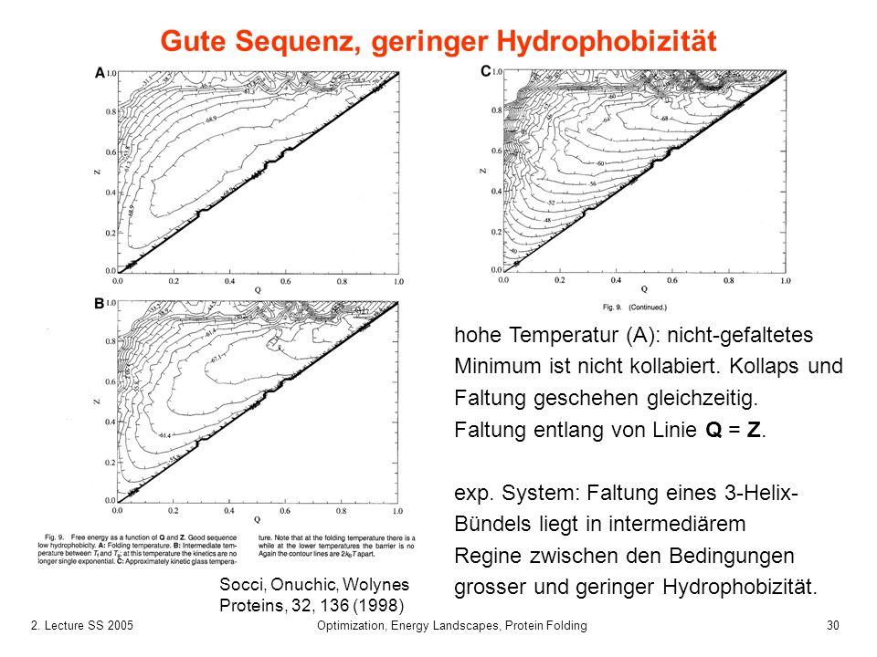 302. Lecture SS 2005 Optimization, Energy Landscapes, Protein Folding hohe Temperatur (A): nicht-gefaltetes Minimum ist nicht kollabiert. Kollaps und