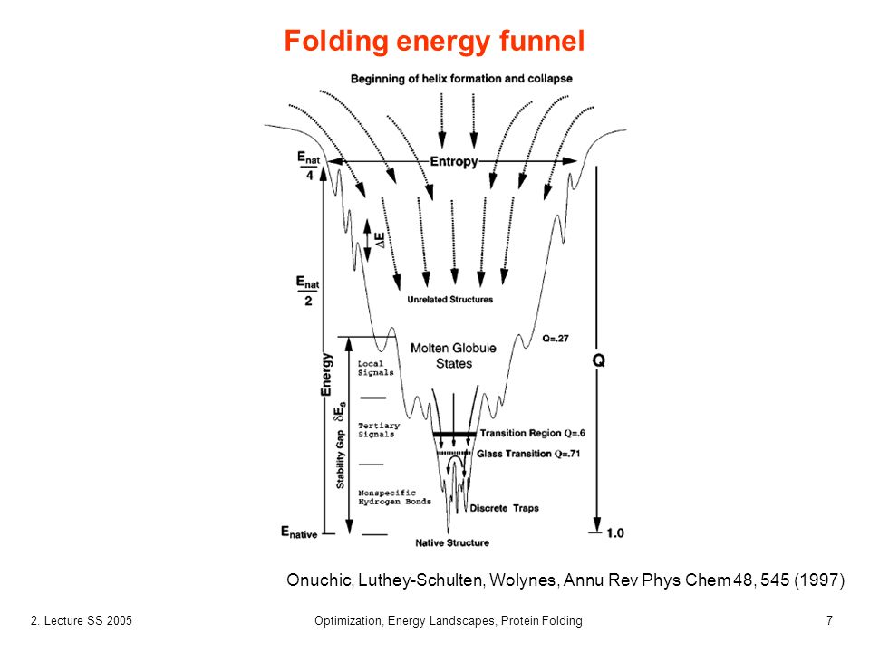72. Lecture SS 2005 Optimization, Energy Landscapes, Protein Folding Folding energy funnel Onuchic, Luthey-Schulten, Wolynes, Annu Rev Phys Chem 48, 5