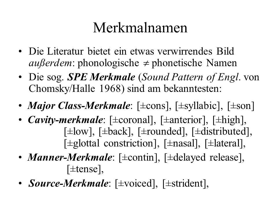 Merkmalnamen Die Literatur bietet ein etwas verwirrendes Bild außerdem: phonologische phonetische Namen Die sog. SPE Merkmale (Sound Pattern of Engl.