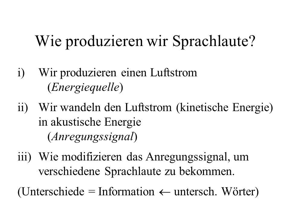 Wie produzieren wir Sprachlaute? i)Wir produzieren einen Luftstrom (Energiequelle) ii)Wir wandeln den Luftstrom (kinetische Energie) in akustische Ene