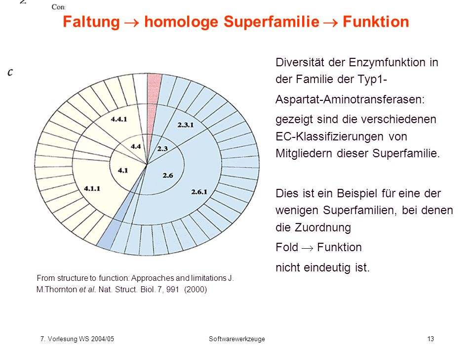 7. Vorlesung WS 2004/05Softwarewerkzeuge13 Faltung homologe Superfamilie Funktion From structure to function: Approaches and limitations J. M.Thornton