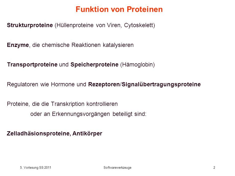 5. Vorlesung SS 2011Softwarewerkzeuge2 Funktion von Proteinen Strukturproteine (Hüllenproteine von Viren, Cytoskelett) Enzyme, die chemische Reaktione