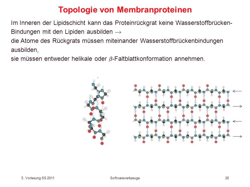 5. Vorlesung SS 2011Softwarewerkzeuge26 Im Inneren der Lipidschicht kann das Proteinrückgrat keine Wasserstoffbrücken- Bindungen mit den Lipiden ausbi