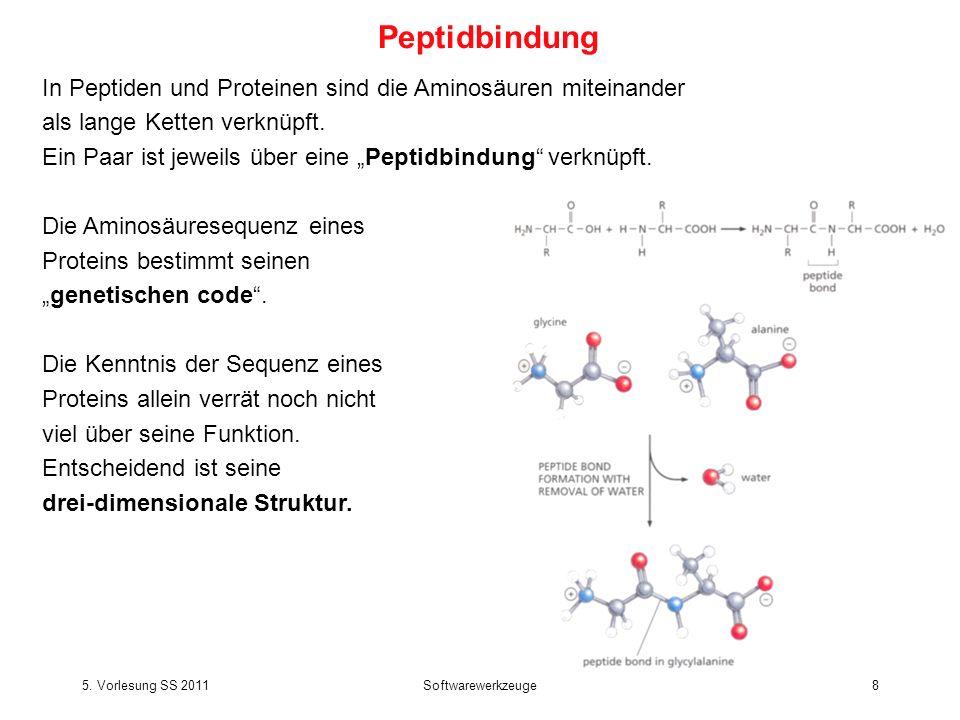 5. Vorlesung SS 2011Softwarewerkzeuge8 In Peptiden und Proteinen sind die Aminosäuren miteinander als lange Ketten verknüpft. Ein Paar ist jeweils übe