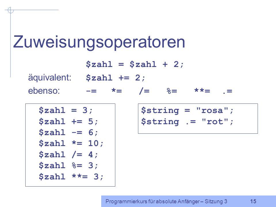 Programmierkurs für absolute Anfänger – Sitzung 3 14 Flaggen und Boole sche Variablen Flagge: Variable, die nur kleine ganzzahlige Werte annimmt und an bestimmten Stellen Auskunft darüber gibt, ob bestimmte Bedingungen erfüllt sind oder nicht.