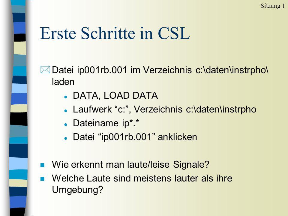 Erste Schritte in CSL *Datei ip001rb.001 im Verzeichnis c:\daten\instrpho\ laden l DATA, LOAD DATA l Laufwerk c:, Verzeichnis c:\daten\instrpho l Dateiname ip*.* l Datei ip001rb.001 anklicken n Wie erkennt man laute/leise Signale.